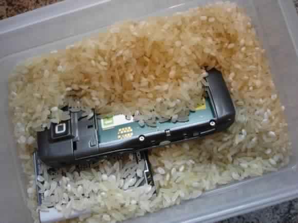 e71-rice1-580x435